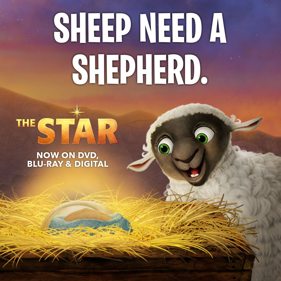ruth the sheep from the star
