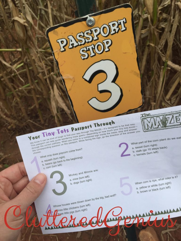 passport patterson farm corn maze