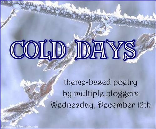 Cold Days (A Poem)