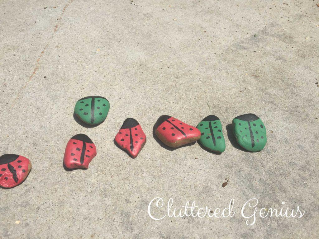 painted ladybug rocks