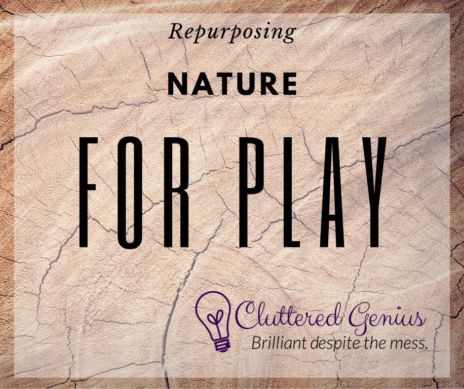 Repurposing Nature for Play